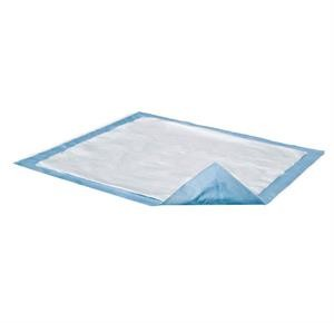 Cleansing Underpad 23x24 w/10 pieces